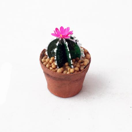 Vasinho de mini cactos